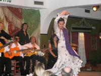 Мадрид Фламенко 2.JPG