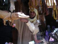 Марракеш берберский рынок.JPG